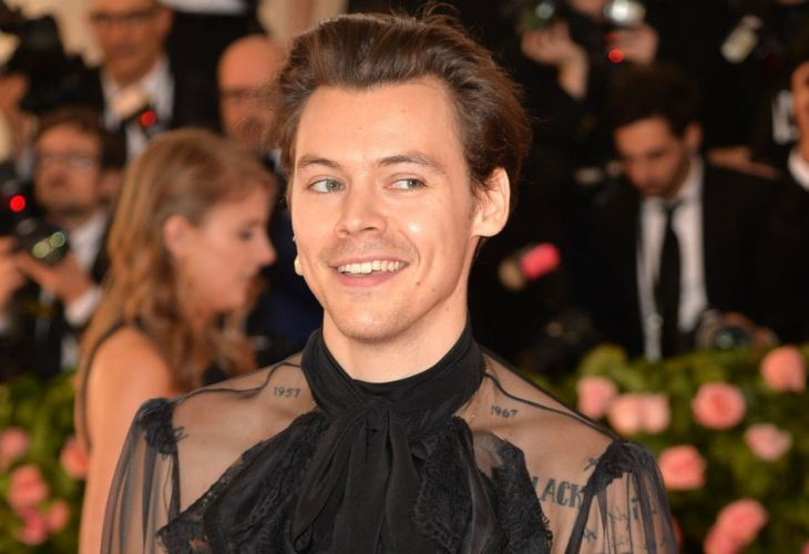 Singer Harry Styles has a dream Hollywood role. Do you think he can measure up?  (Photo: Bang ShowBiz)