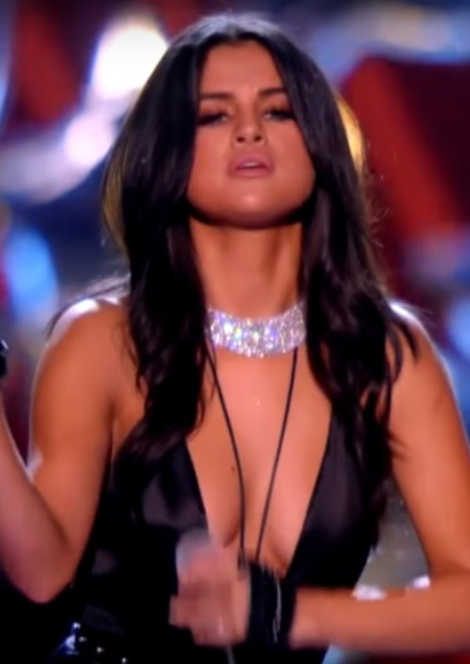 Selena Gomez Just One of the Girls at Victoria's Secret Fashion Show (See!) 4