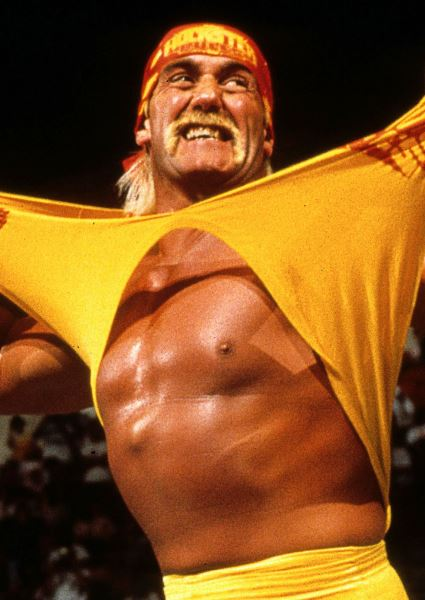 Hulk Hogan Gets a Big Payday From Gawker and We're All Poorer For It 12