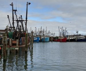 Amid Hamptons Mansions, East End Fishermen Beat On Against the Tide