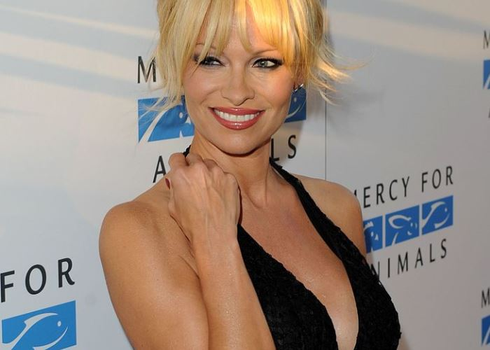 Pamela Anderson Weighs in On Tommy Lee's Fight With Son Brandon 32