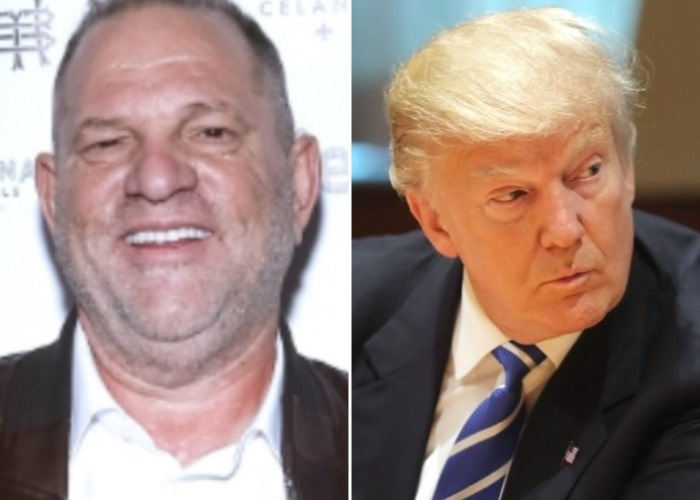 Harvey Weinstein could seek a pardon from President Trump for his conviction on sex and rape charges. (Photo: IM Collage)
