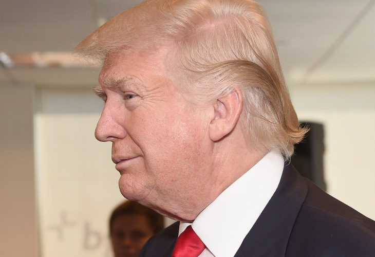 See Donald Trump fake hair, fake tan