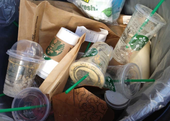Starbucks Under Fire for Plastic Pollution: Sign the Petition Now! 2
